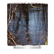 Thin Ice Of A New Day Shower Curtain