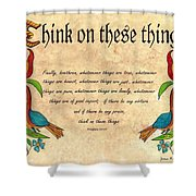 Think On These Things Fraktur Shower Curtain