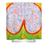 Think With Your Heart Shower Curtain