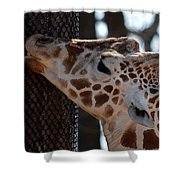 Thinking Africa Shower Curtain