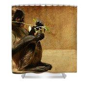 Thinking Monkey Shower Curtain