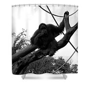 Thinking Of You Black And White Shower Curtain