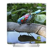Thirsty Bird Shower Curtain