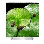 Thirsty Honey Bees Shower Curtain