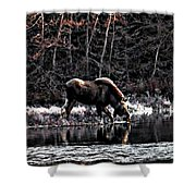 Thirsty Moose Impressionistic Digital Painting Shower Curtain
