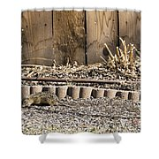 Thirteen-lined Ground Squirrel Shower Curtain