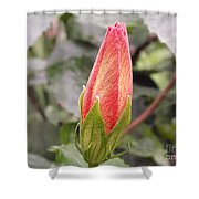 This Bud For You Shower Curtain