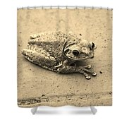 This Old Frog Shower Curtain