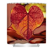 This One Is For Love Shower Curtain by Linda Sannuti