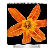 This Orange Lily Shower Curtain