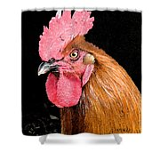 this Rooster Means Business Shower Curtain