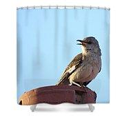 This Spring's Mockingbird Shower Curtain