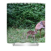 This Standing Up Is Hard Mom Shower Curtain