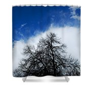 #thisparticulartree Shower Curtain