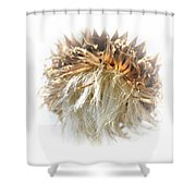 Thistle Abstract 14-1 Shower Curtain