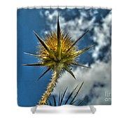 Thistle And Sky Shower Curtain