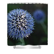 Thistle Bloom 2 Shower Curtain