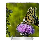 Thistle Do Just Fine Shower Curtain