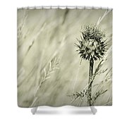 Thistle - Dreamers Garden Series Shower Curtain