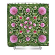 Thistle Star Mandala Shower Curtain
