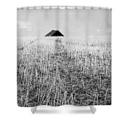 Thistles In Deed  Shower Curtain