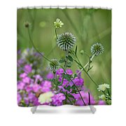 Thistles Shower Curtain