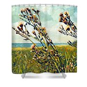 Thistles On The Beach - Oil Shower Curtain by Michelle Calkins
