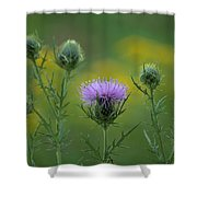 Thorn Buds Shower Curtain