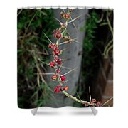 Thorns And Blooms Shower Curtain