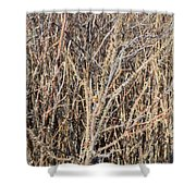 Thorny Wall Shower Curtain