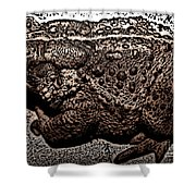Thoughtful Toad Shower Curtain