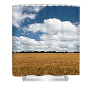 Thoughts Of A Wheatfield Shower Curtain
