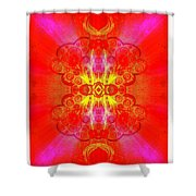 Thoughts Of Love And Light Transforming Shower Curtain