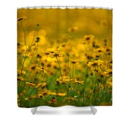 Thoughts Of Spring Shower Curtain