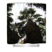 Thousand Palms Canyon Shower Curtain