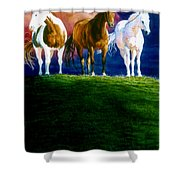 Three Amigos Shower Curtain by Hanne Lore Koehler