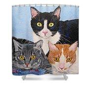 Three Amigos Shower Curtain