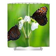 Three Beauties Shower Curtain