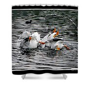 Three Bottoms Up Shower Curtain