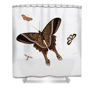 Three Butterflies And A Gnat Shower Curtain