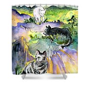 Three Cats On The Penon De Ifach Shower Curtain