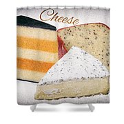 Three Cheese Wedges Distressed Text Shower Curtain