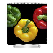 Three Colors Shower Curtain