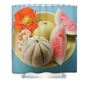 Three Different Melons In Bowl (overhead View) Shower Curtain
