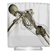 Three Dimensional View Of Female Spine Shower Curtain by Stocktrek Images