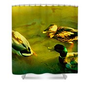 Three Ducks On Golden Pond Shower Curtain