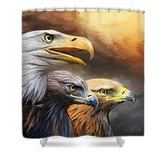 Three Eagles Shower Curtain