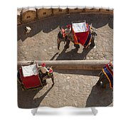 Three Elephants At Amber Fort Shower Curtain