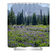 105417-three Fingered Jack And Wildflowers Shower Curtain