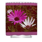 Three Flowers On Maroon Shower Curtain